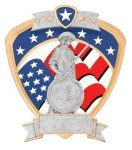 Signature Series National Guard Shield Award Signature Shield Resin Trophy Awards