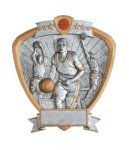Signature Series Basketball Shield Awards Signature Shield Resin Trophy Awards